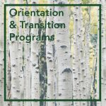 Orientation and Transition Programs