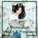 Undergraduate Majors and Programs